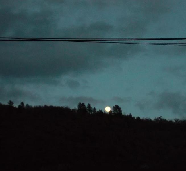 Une promenade dans la nuit 14