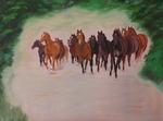 Herd of horses in canter