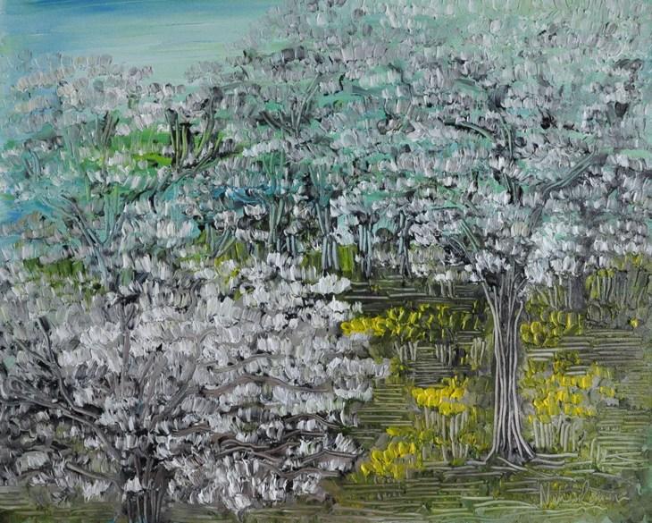 A Walk Through Spring