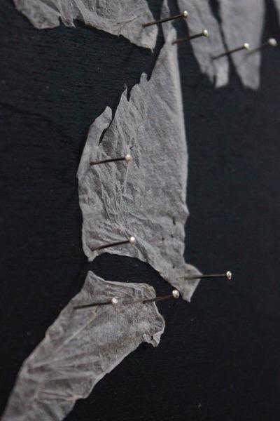 Haut Dino Detail