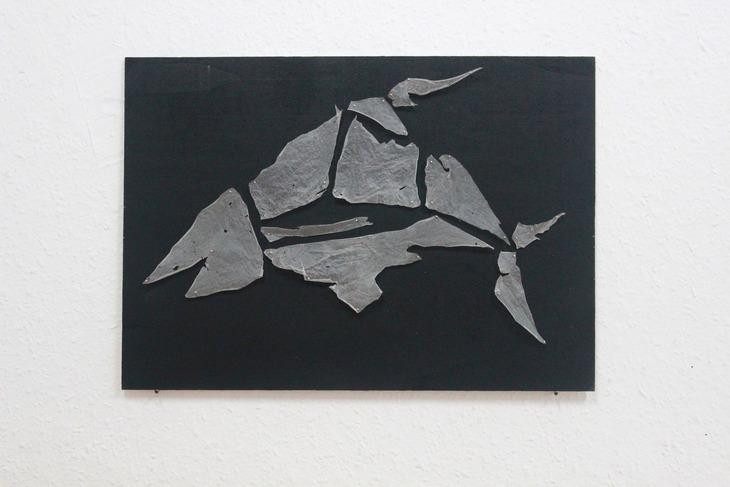 Haut Hai