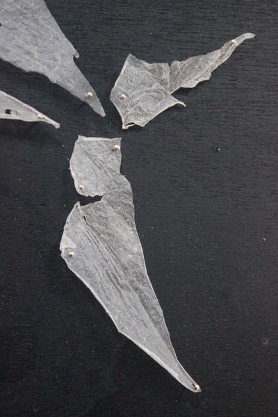 Haut Hai Detail
