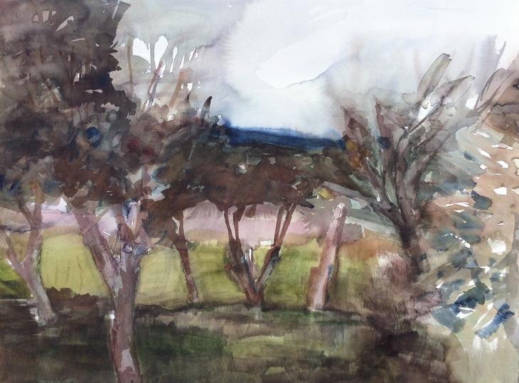 The apple garden at Rosendal Park