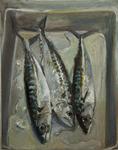 mackerel2