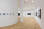 Exhibition: Jochen Hein – Die Natur des Menschen. Human Nature
