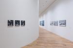"""Exhibition """"Jochen Hein – Die Natur des Menschen. Human Nature"""""""