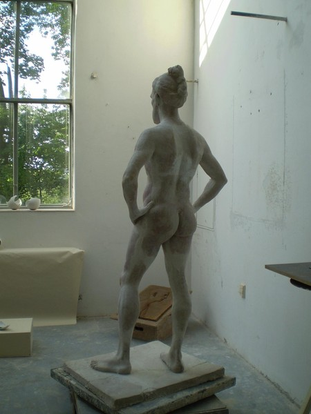 studyof the male figure