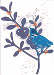 049 Blauvogel