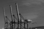 Idle Cranes