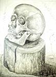 Cranium of a Death on a Wooden Block