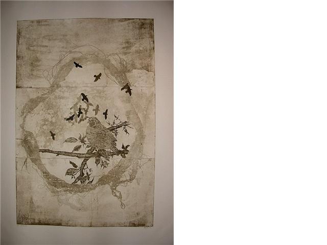 etching - Quail