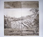 etching - Rice Field