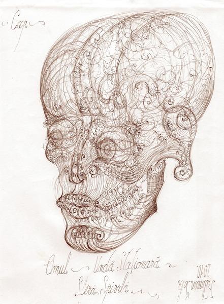 23 Human craniu vortex sfera embrion anatomia 2 pattern