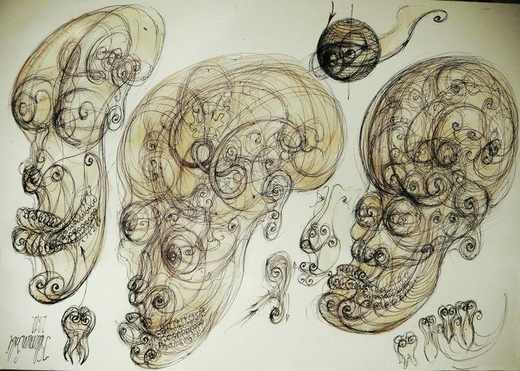 24 Human craniu  ochi molari vortex sfera embrion anatomia patte