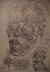 25 Human craniu  ochi He superfluid fermionic vortex sfera embri