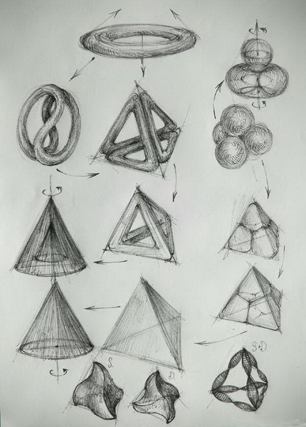 71 Algoritm computational  diagrama morfogeneza bidirectionala T