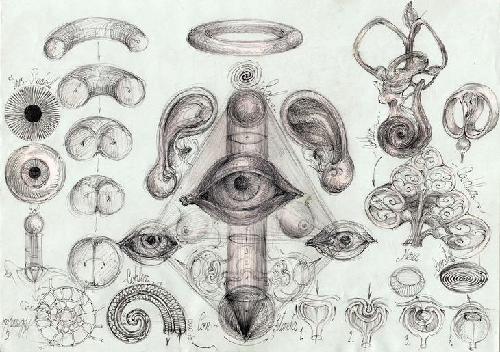 85  Algoritm simbolic diagrama anatomica Sfera-soare-ochi-con-sp