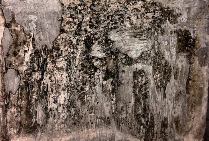 bkk-texture 14