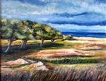 2014 Vendicari oil on canvas 40 x 50