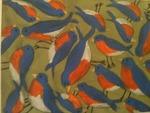 photo (237)Bluebirds