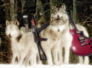 The Wolves