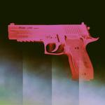 P.gun