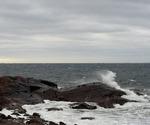 Newfoundland III