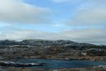Newfoundland V