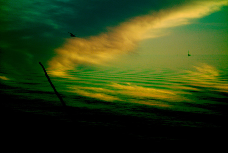 tidal serenity