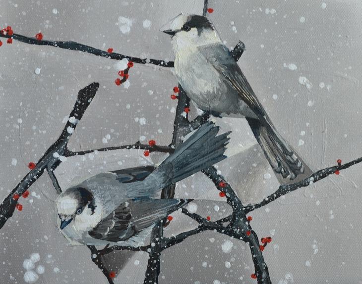 Winter Grey Jays