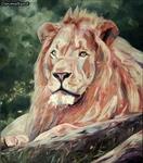 King Colour
