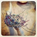 Wire Birds Nest