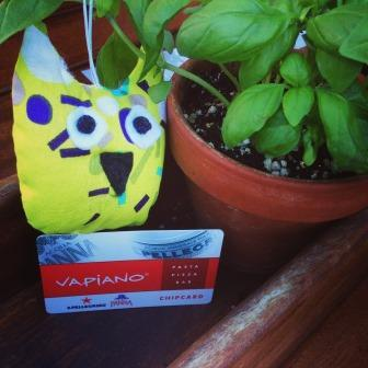 Travelling Owl Project at Vapianos - Surfers Paradise