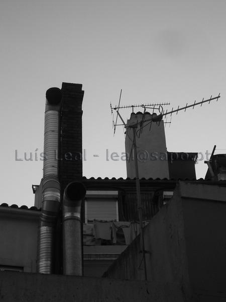 Luis Leal 2009 Lisboa IMGP0113