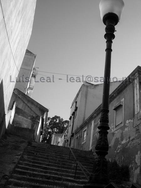 Luis Leal 2009 LisboaIMGP0069
