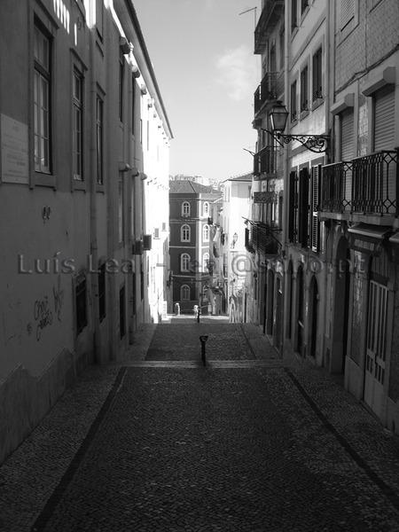Luis Leal Lisboa Esc Duque 5IMGP0105