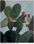Sr13#CactusDetailV1-Ts