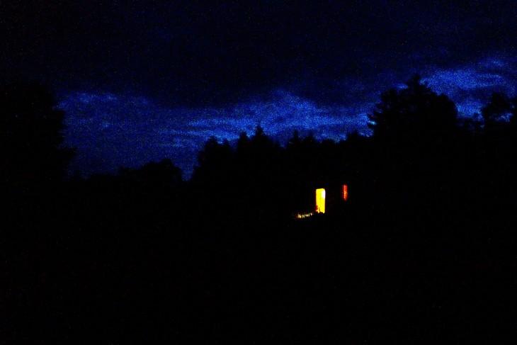 Nighted Woods