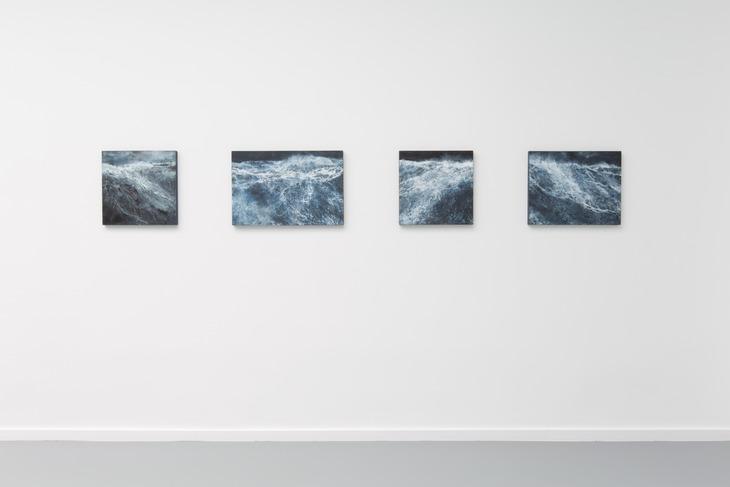 Exhibition Gallery Commeter