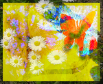 Fluttering Daisy Power in The Summer of Love by MushroomBrain