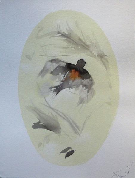 birds of carros27 31x41 copy