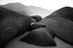 Baleias de Paraty ©MB 2007