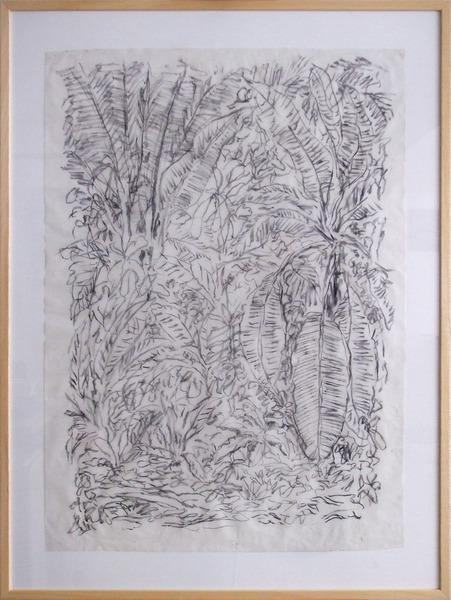 Maripa palm forest Botopasi - Day 3-1