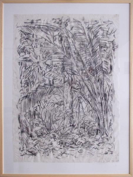 Maripa palm forest Botopasi - Day 4-1
