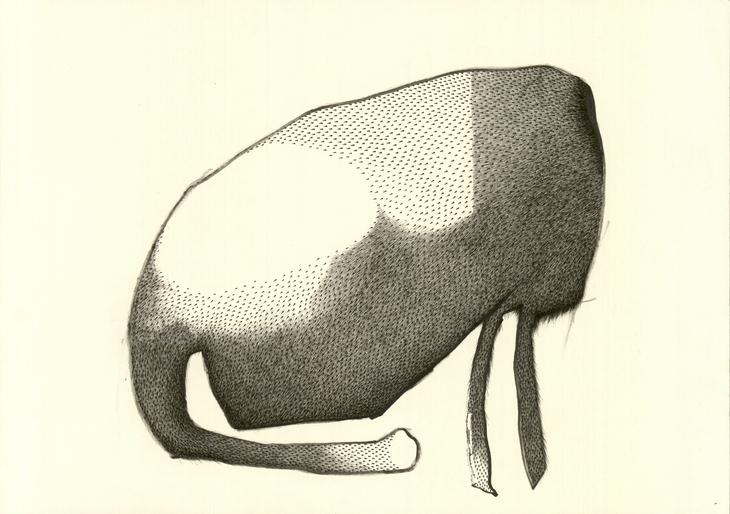 kopflos