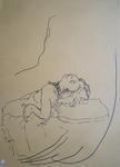 drawIMG#_0766