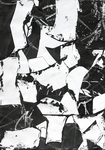 Untitled (Sumi Collage No.4)