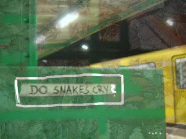 do snakes cry ?