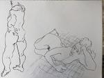 drawIMG#_3930