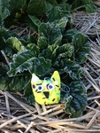 Travelling Owl Project - veggie patch in Marysville